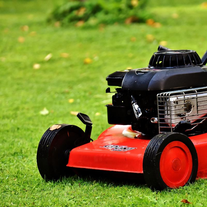 Grass Cutting Services in Carlisle, Cumbria