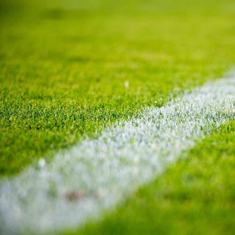 Sports Pitch Maintenance Company in Carlisle, Cumbria